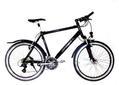 alu mtb 26 classic stvzo diermann bergsieger gmbh ihr fahrrad fachgro handel aus paderborn. Black Bedroom Furniture Sets. Home Design Ideas