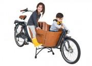 Kinder-Transporträder