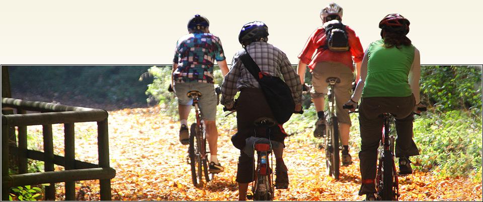 Diermann-Fahrrad – Qualität seit 1958